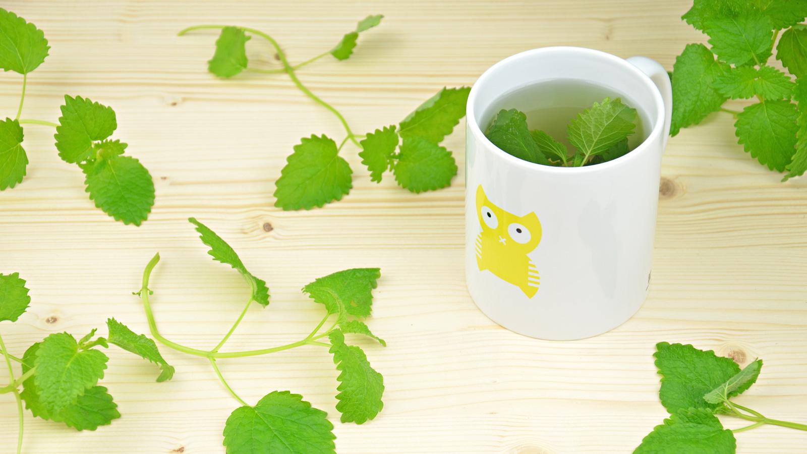 Vincend Kaffeetasse Teetasse Kaffee Tee